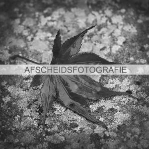 Uitvaartfotografie_Afscheidsfotografie_Rouwfotografie