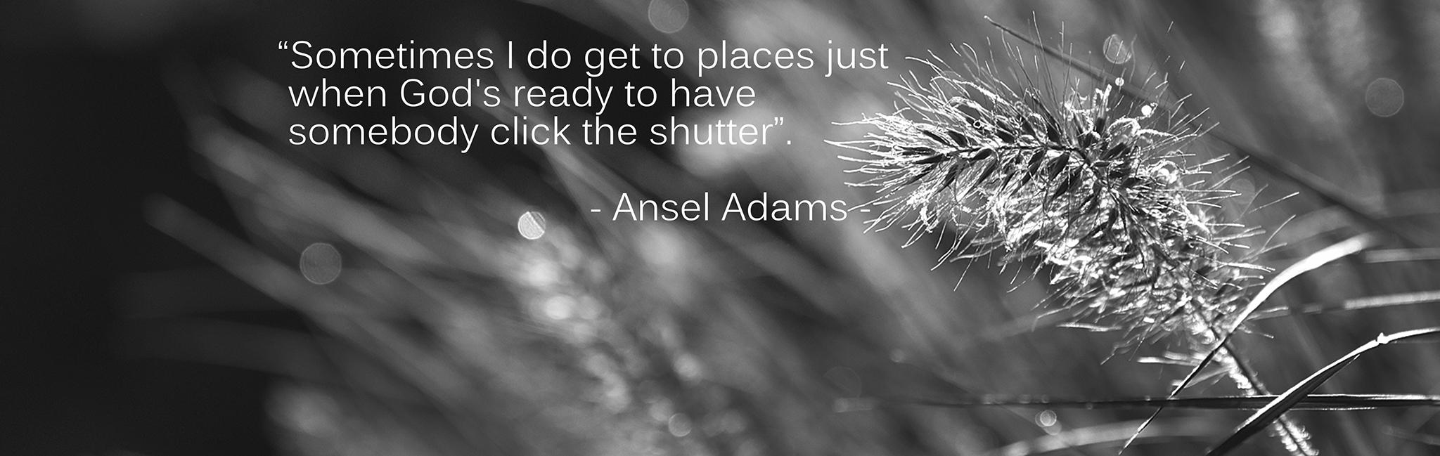 Spreuk Ansel Adams Fred de Krom Fotografie en beeldbewerking
