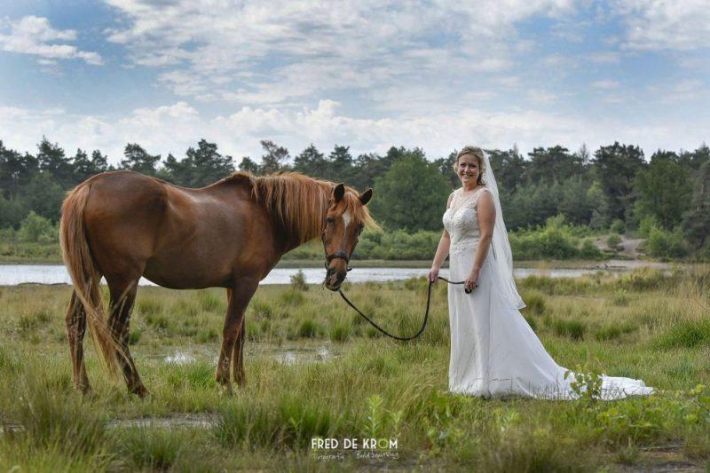 Bruid met paard bij Meeuwven in Waalre. Valkenswaard Eindhoven Veldhoven Meerhoven Geldrop
